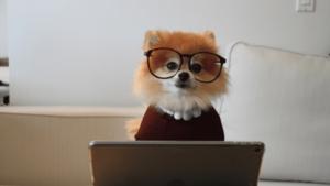 アイキャッチ画像_プログラミングの習い事は意味ない?